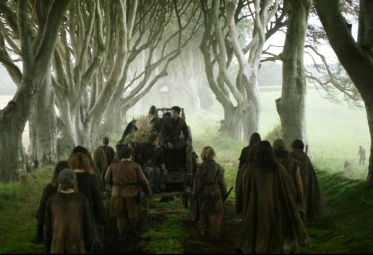 Dark Hedges in GOT