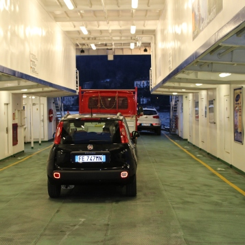 Fifi on the ferry